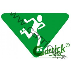 Badge lvt - Patineuse