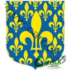 Ecusson - Ile de France - GSE