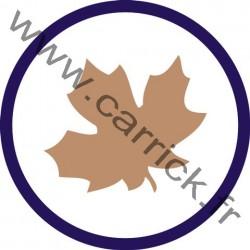Badge Botaniste - ENF