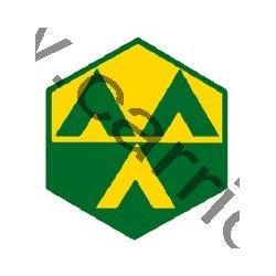 Badge éclaireur GSE - camp