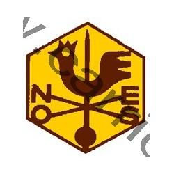 Badge éclaireur GSE - campagne
