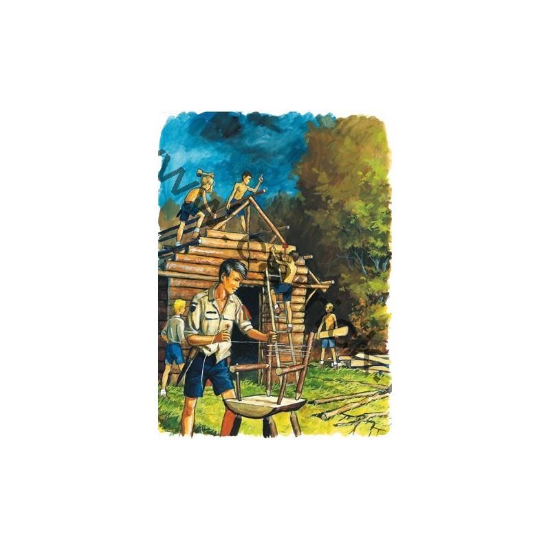 Carte postale construction de ch let carrick france - Construction de chalet ...