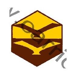 Badge éclaireur GSE - ciel