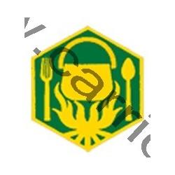 Badge éclaireur GSE - cuisine
