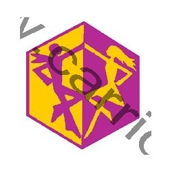 Badge éclaireur GSE - danse