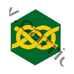 Badge éclaireur GSE -...