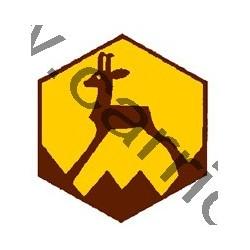 Badge éclaireur GSE - montagne