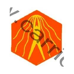 Badge éclaireur GSE - natation