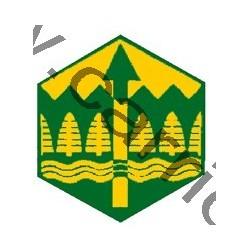 Badge éclaireur GSE - orientation