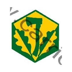 Badge éclaireur GSE - pionnier