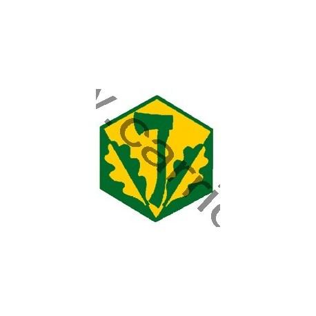 Badge éclaireur GSE - pionniérisme