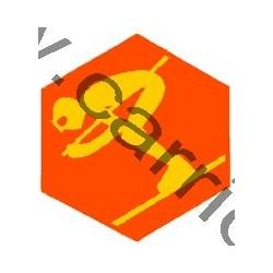 Badge éclaireur GSE - ski