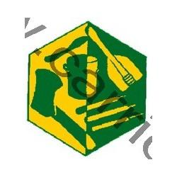 Badge éclaireur GSE - Matériel