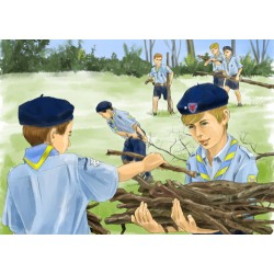 CP - Service de bois