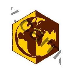 Badge éclaireur GSE - terre