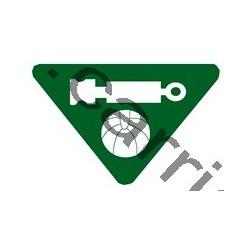 Badge louvetisme GSE - Bon joueur