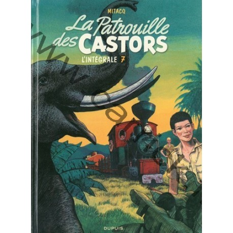 Castors 7
