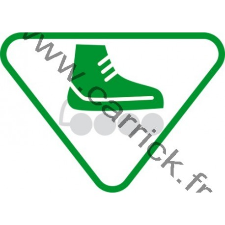 Badge lvtx Patineur - ENF