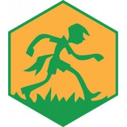 Badge éclaireur GSE - Jeu