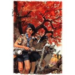 Poster Affût en forêt