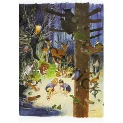 CP - Féerie des bois