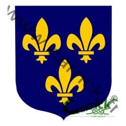 Ecusson - Ile de France - Tout mouvement