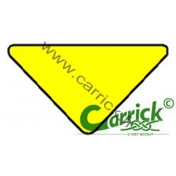 Triangle de sizaine jaune -...