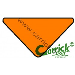 Triangle de sizaine orange - hors GSE